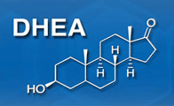 [Image: DHEA structure]